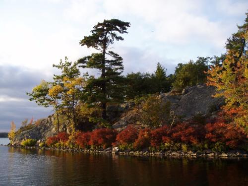 Photo thumbnail: Moira Lake 1
